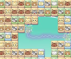 cute-kitty-matching